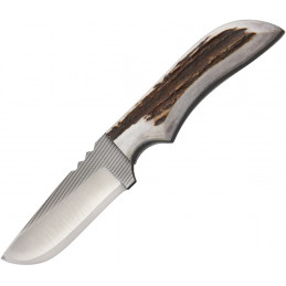 Bandit Headlamp Blue/White