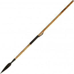 Wilderness Medical DVD Set