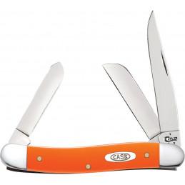 Compass Shark